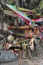 Holy tree at Chow Sue Kong Shrine, Duang Tawan Alley, Bangkok, Thailand - LBF02579