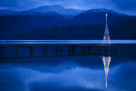 Christmas tree reflecting in lake - BLEF03994