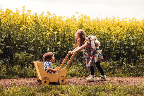 Girl with her brother in a doll buggy on a field way - SEBF00107