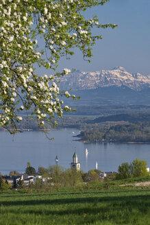 Deutschland, Baden-Württemberg, Bodensee, Überlinger See, Überlingen, Münsterturm und Alpen im Frühling - SH02183