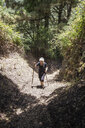 Senior woman hiking through forest at Garajonay National Park, La Gomera, Canary Islands, Spain - MAMF00677