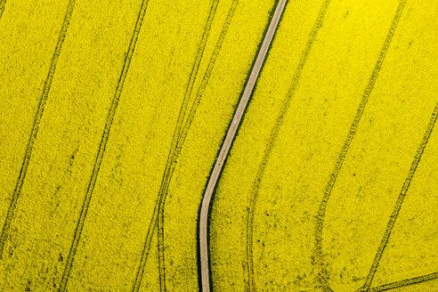 Aerial view of rape fields near Usingen, Hesse, Germany - AMF07053