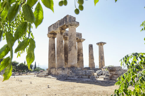 archäologische Ausgrabungsstätte antikes Korinth, dorische Säulen, archaischer Apollon Tempel, Argolis, Peloponnes, Griechenland - MAMF00700