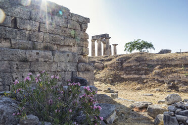 Archaeological site with archaic Temple of Apollo, Dorian columns, Corinth, Greece - MAMF00703