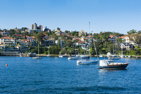 Sailing boats in the harbour of Sydney, New South Wales, Australia - RUNF02218