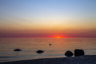 View to the sea at sunrise, Binz, Ruegen, Germany - PUF01521
