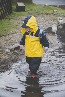 Little boy in a rainsuit exploring a puddle, Sylt, Germany - IHF00065