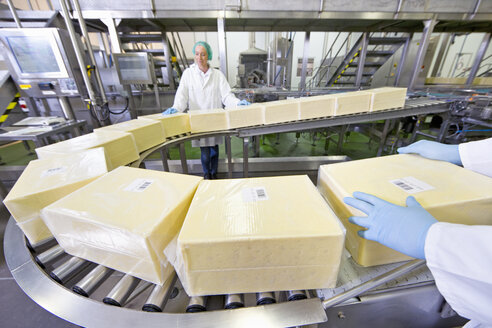 Quality control workers handling large blocks of cheese at production line in processing plant - JUIF01149