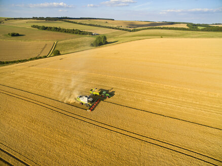 Aerial landscape view of combine harvester filling tractor trailer in sunny golden barley field - JUIF01158