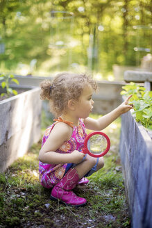 Girl examining garden plants with magnifying glass - BLEF06367