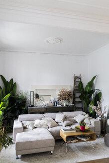 Empty living room - GIOF06505