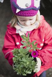 Little girl holding flower in flowerpot - PSIF00297