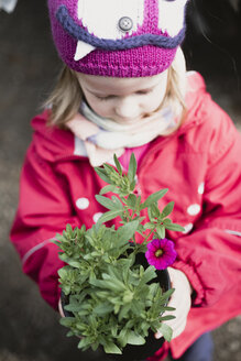 Little girl holding flower in flowerpot - PSIF00297