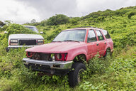 Dumped cars, Maui, Hawaii, USA - FOF10820