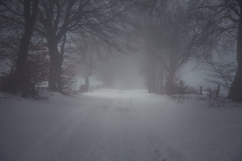 Snow-covered way in winter, Eifel, Germany - ANHF00134