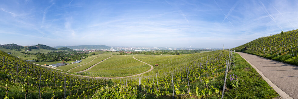 Panoramic view over vineyards at Kappelberg in spring, Fellbach, Germany - STSF02011