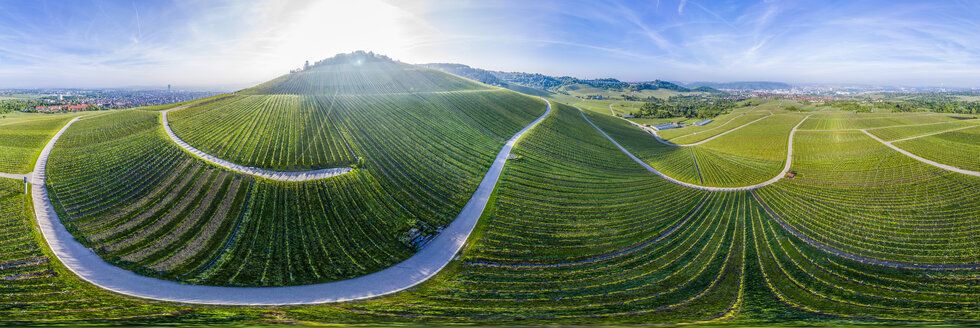 Aerial view over vineyards at Kappelberg in spring, Fellbach, Germany - STSF02017