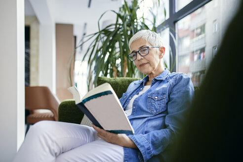 Serbia, Novi Sad, Senior woman, Reading, Book - ZEDF02365