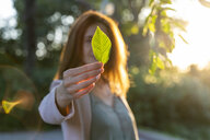 Young redheaded woman holding green leaf in a park - AFVF03204