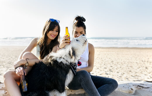 Two women with dog and beer bottles on the beach - MGOF04086