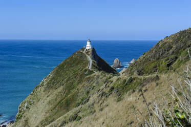 Nugget Point Lighthouse, the Catlins, South Island, New Zealand - RUNF02577