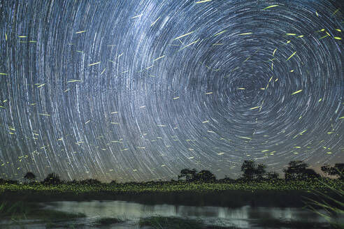 A star trail at night on the banks of the river with firefly trails - MINF11571