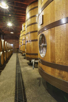 Close up of wine barrels in cellar - MINF11591