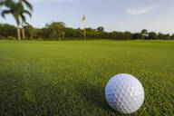 Golf ball rolling on putting green - MINF11810