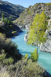 Turquoise water of the Kawarau River in the Kawarau Gorge, South island, New Zealand - RUNF02684