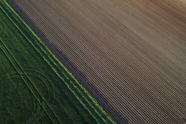 Aerial View of abstract landscape with agricultural fields, springtime, Franconia, Bavaria, Germany - RUEF02238