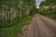Dirt road in rural landscape - MINF12145
