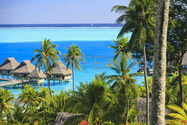 Palm trees overlooking tropical resort, Bora Bora, French Polynesia - MINF12235 - Mint Images/Westend61