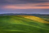 Rolling green hills in rural landscape - MINF12415