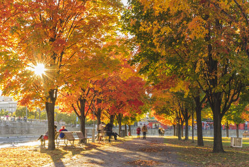 People in park in autumn - MINF12663