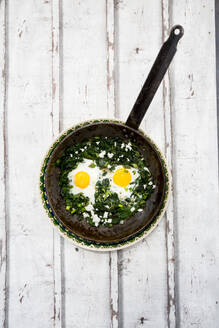 Green Shakshouka with baby spinach, chard, spring onions and basil in a pan - LVF08093