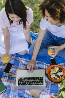 Two women having a picnic and using laptop in park - FMOF00721
