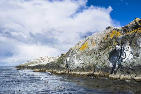Island in the Beagle channel, Ushuaia, Tierra del Fuego, Argentina, South America - RUNF02777