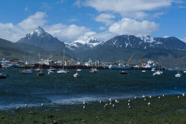 View of harbour, Ushuaia, Tierra del Fuego, Argentina, South America - RUNF02789