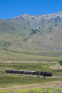 La Trochita narrow gauge railway between Esquel and El Maiten in Chubut Province, Argentina, South America - RUN02810