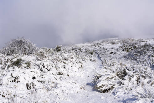 Snow at Way of St. James, near Cruz de Ferro, Spain - LMJF00094