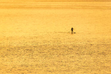Man on stand up paddle board at sunset, North Berwick, East Lothian, Scotland - SMAF01258