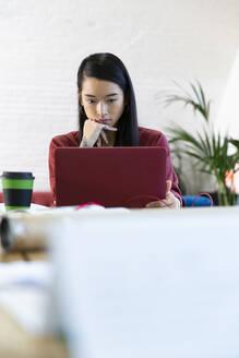 Woman using laptop in office - FKF03345
