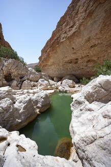Tourist looking at Wadi Bani Khalid, Oman - WWF05124