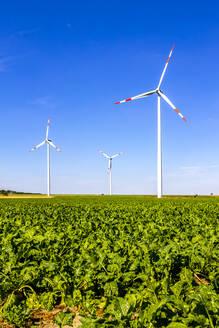 Wind wheels on field, Hesse, Germany - PUF01633