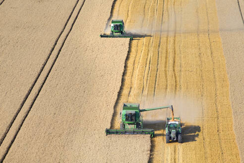 Combine harvesters, harvesting wheat into trailer, in rural field - JUIF01554
