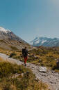 Hiker exploring trail, Wanaka, Taranaki, New Zealand - ISF21876