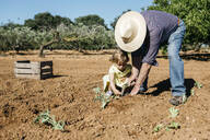 Grandfather and granddaughter planting vegetables in the field - JRFF03393