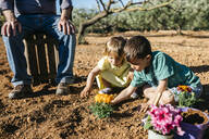 Grandfather and grandchildren planting a flower in the garden - JRFF03408