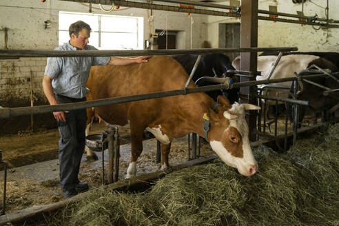 necker, switzerland,family and life of farmers, from father to son from mother to daughter learn how to become farmers - FBAF00830