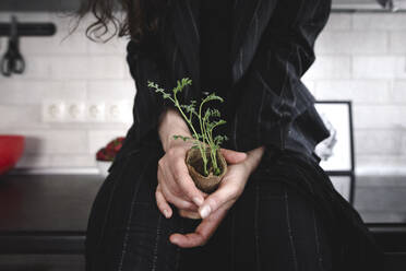 Woman's hands holding sprouts - EYAF00262